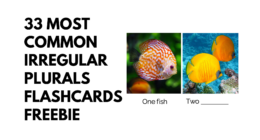 33 Most Common Irregular Plurals Flashcards [Freebie]