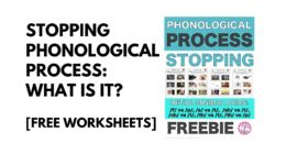 Stopping Phonological Process: What is it? [Free Worksheets]