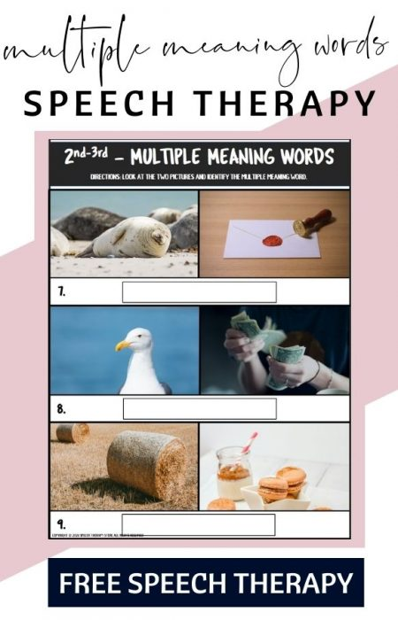 multiple-meaning-words
